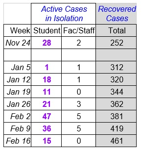 Faculty Senate Working Group - chart Feb 17_2021