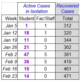 Faculty Senate Working Group - chart Feb 24_2021