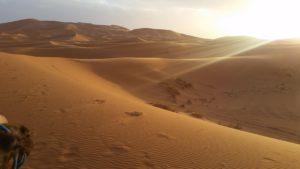 brandon-crane-sahara-desert-near-merzouga-landscape-2