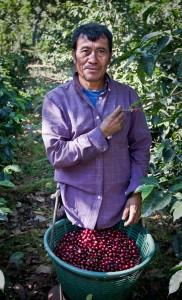 Guatemala-Coffee-Sourcing-2012-3-of-34
